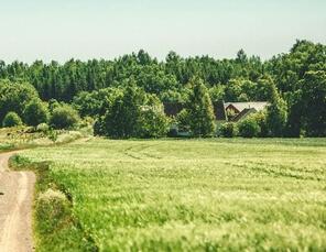 idyllisches Haus im Grünen