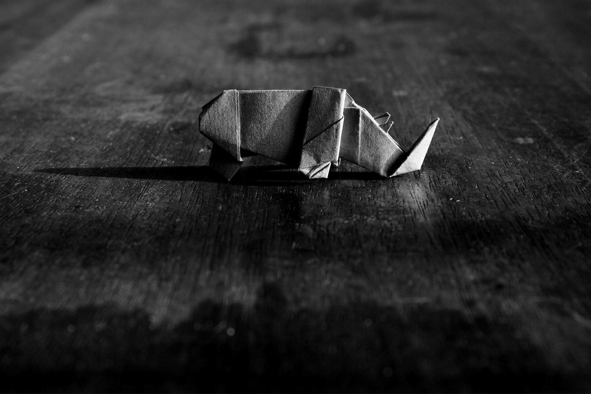 Origami Rhinozeros auf Holztisch